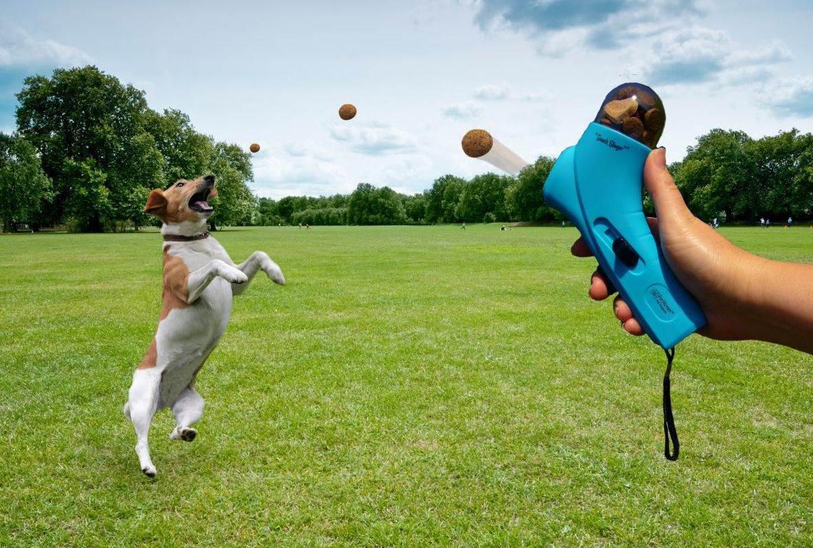Bacač hrane za pse