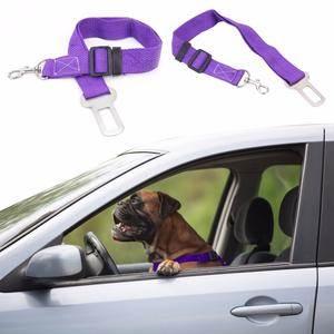 sigurnosni pojas pas u autu
